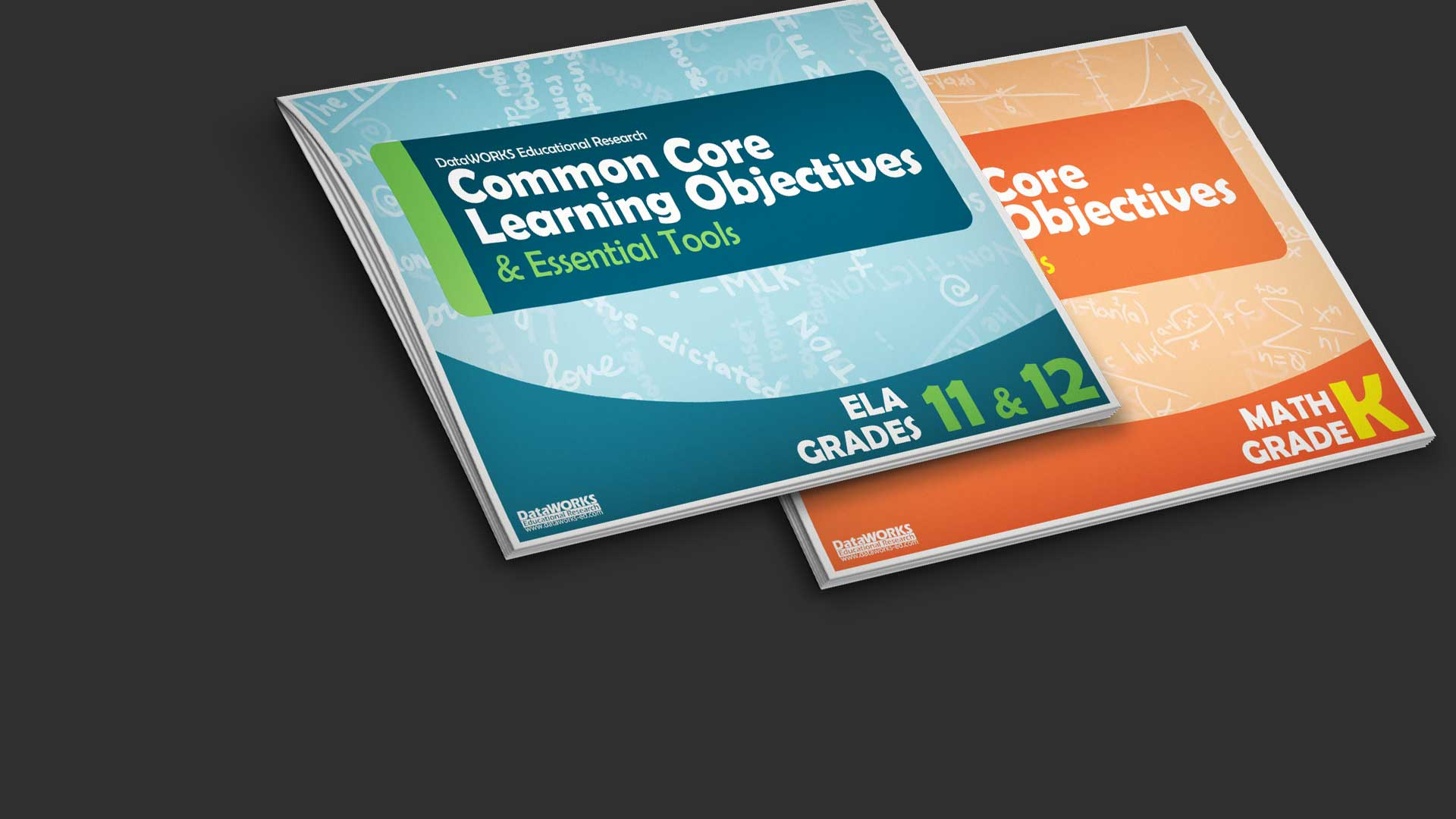 DataWORKS Common Core Learning Objectives